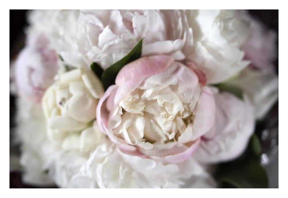 bouquet di peonie rosa Bohem